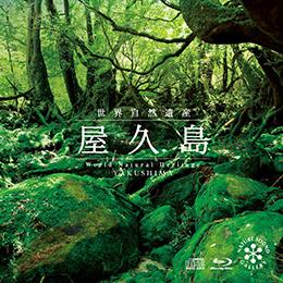 屋久島~世界自然遺産