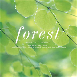 Forest・・・森