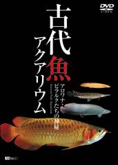 古代魚アクアリウム