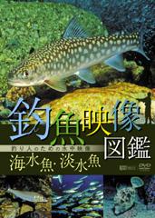 釣魚映像図鑑 [海水魚・淡水魚]