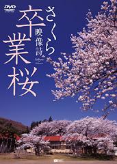 卒業桜 さくら映像詩