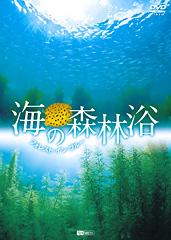 海の森林浴